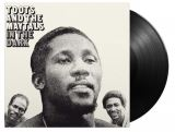 Toots & The Maytals-In The Dark -Hq-