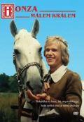 Zeman Bořivoj Honza málem králem - DVD