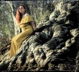 Kenta KattyGyal-Invisible Roots