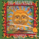 Big Mountain-Unity