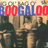 V/A - Big Ol'bag O'boogaloo 1