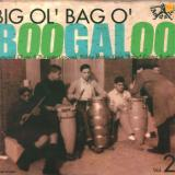 V/A - Big Ol'bag O'boogaloo 2